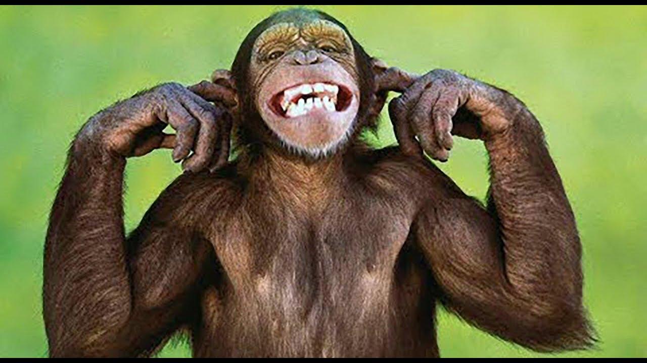 Ανέκδοτο: O Γιωρίκας κέρδισε το Τζόκερ! Επικό γέλιο