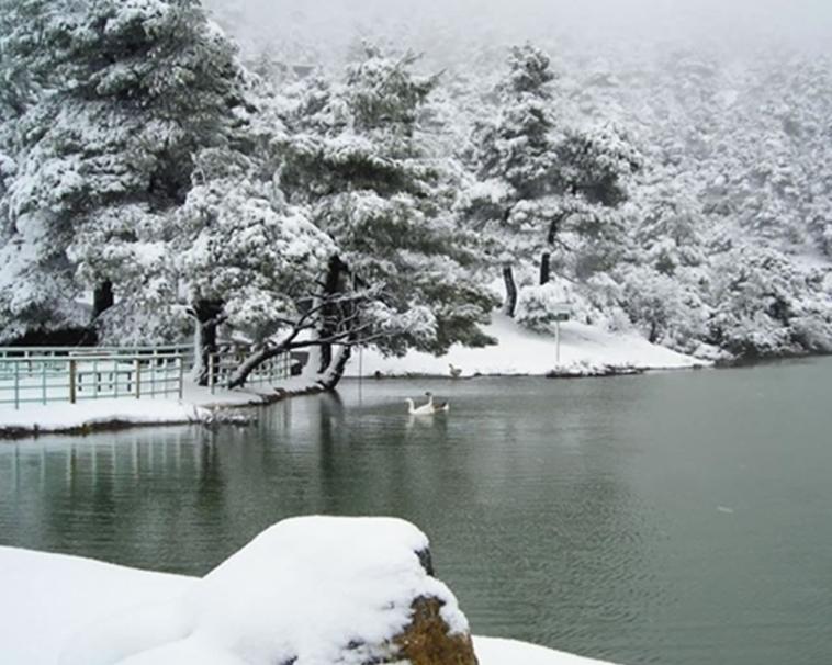 Χιονισμένη η λίμνη στην Πάρνηθα! Εντυπωσιακό σκηνικό